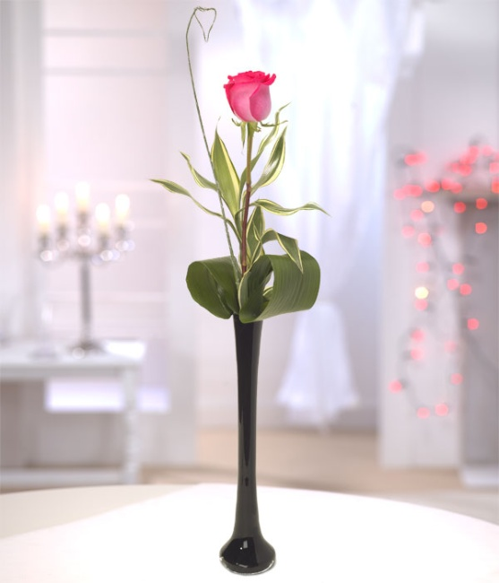 Single Rose In Vase Crazy Daisy Florists